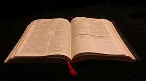 Traktuje je dosłownie, i dostosowuje swoje życie pod jego nauczanie.Wiem przecież że to Słowa Boga i on najlepiej wie co chciał powiedzieć