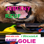 je-bitny_rzuf_v7