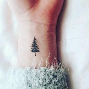 Jak Wam Się Podoba Ten Tatuaż Przedstawiający Drzewo Iglaste