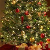 Boże Narodzenie i Wigilia.Bo my to kochamy