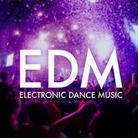 Fani muzyki elektronicznej