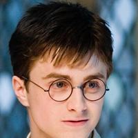 Fani i fanki Harry'ego Pottera