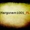 Margonem1001_PL