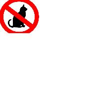 Nie lubimy psów, kotów i koni!