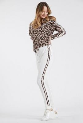 Spodnie z lampasem w cętki