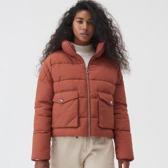 Sinsay - Pikowana kurtka z wysoką stójką - Brązowy
