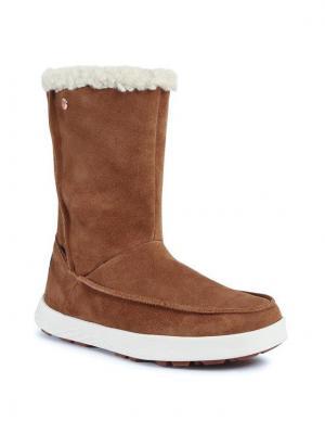 Jack Wolfskin Śniegowce Auckland Wt Texapore Boot H W 4041321 Brązowy