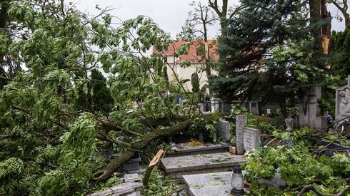 Zniszczenia po nawałnicy w miejscowości Lotyń, nieopodal Suszka (fot. PAP/ Dominik Kulaszewicz)