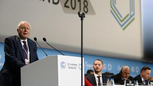 David Attenborough podczas wystąpienia na COP24