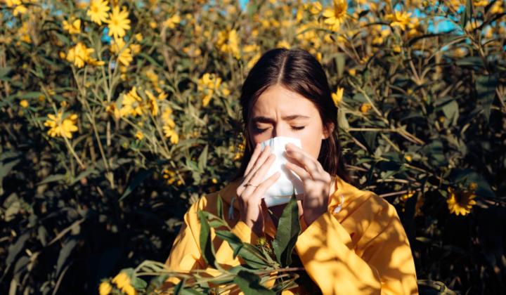 Alergia - badania diagnostyczne z krwi