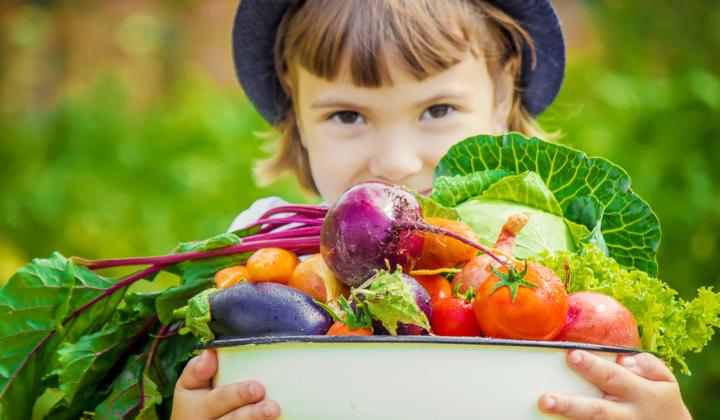 Konsultacja u dietetyka dziecięcego