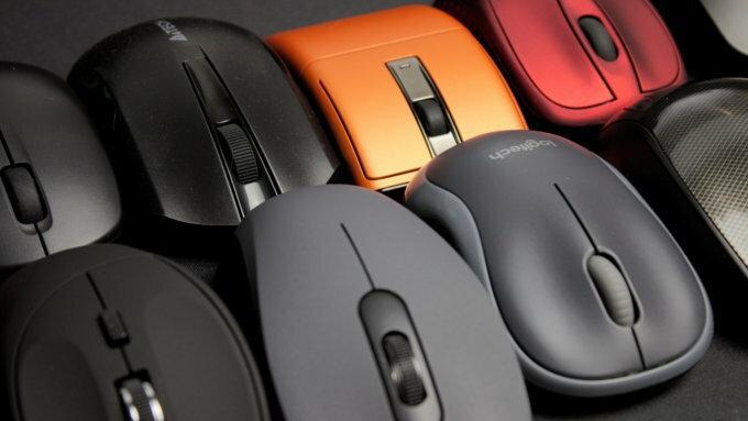 grupa myszy