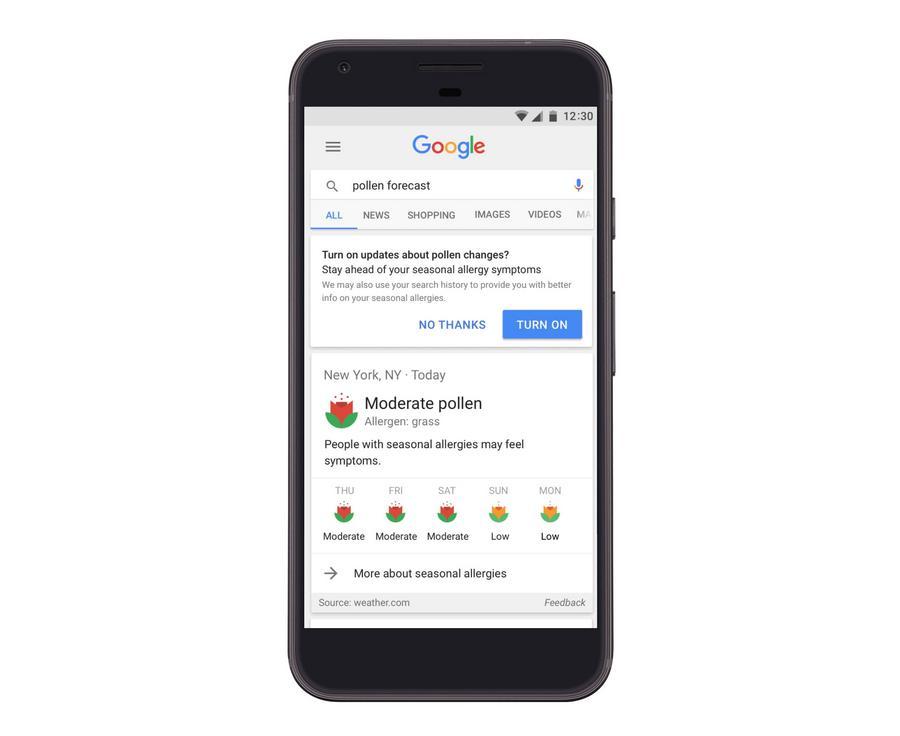 Prognoza dla alergików w Google