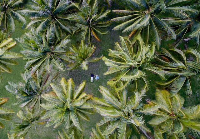 Snimak iz drona, Polinezija