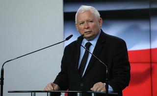'Piątka dla zwierząt'. Kaczyński zapowiada zmiany w kwestii ochrony zwierząt