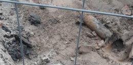 Ewakuacja szkoły w Tczewie! Podczas prac budowlanych znaleziono niewybuch