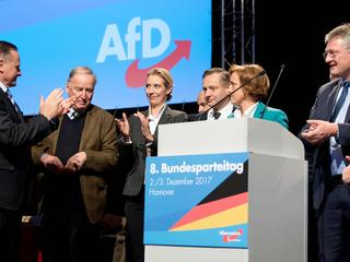 AfD party conference
