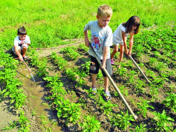 Rad u polju donosi sreću