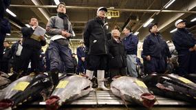 Ponad 2,5 mln złotych za tuńczyka na japońskim targu Tsukiji
