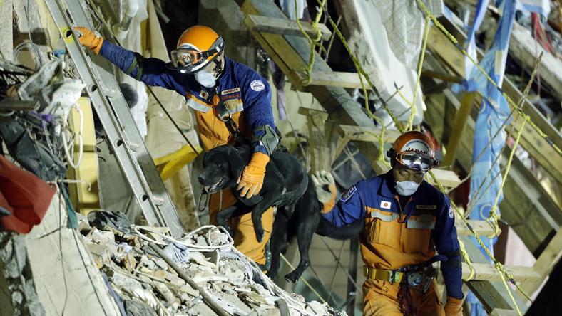 Usuwanie skutków trzęsienia ziemi z 19 września