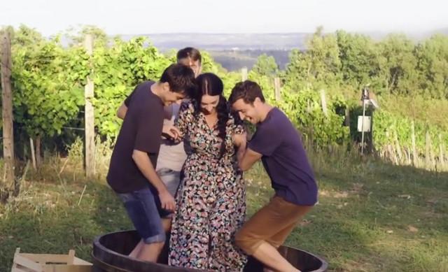 Tajna vinove loze