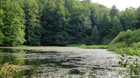 Jeziorka Duszatyńskie przyciągają tysiące turystów