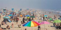 Koronawirus zabija tysiące ludzi w USA. A tak wyglądają plaże w Kalifornii!