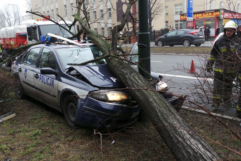 Radiowóz skosił drzewo po zderzeniu z osobówką