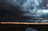 Novi Sad190 nevreme oluja  foto Nenad Mihajlovic