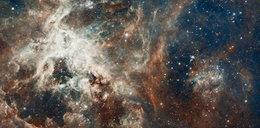 Odebrano 72 zagadkowe sygnały z kosmosu. Naukowcy w szoku