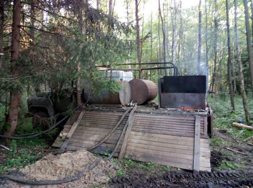 Wielka bimbrownia odkryta w Puszczy Białowieskiej