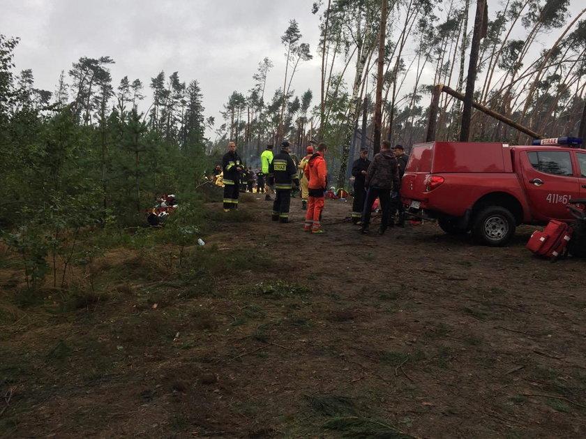 Nawałnica powaliła tysiące drzew i zniszczyła obóz harcerski w Suszku
