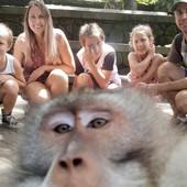 Dok je porodica pozirala za selfi, majmun je zgrabio kameru a onda uradio NEŠTO BEZOBRAZNO (FOTO)
