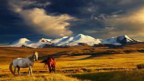 Mongolia - co wiesz o tym kraju? [QUIZ]