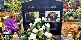 Ewa Bem pochowała psy w marmurowym grobie za...