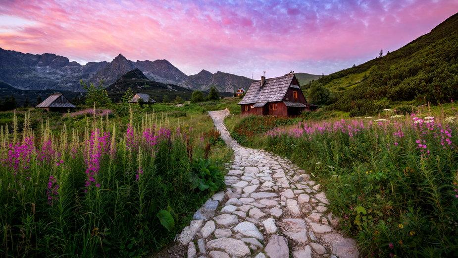 Sześć pięknych szlaków na wakacje w Polsce