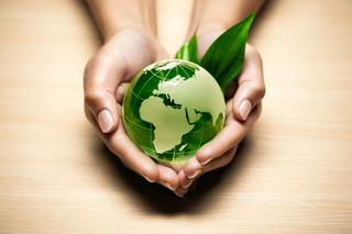 Ekologia się opłaca. Nie trzeba wybierać między nią a PKB