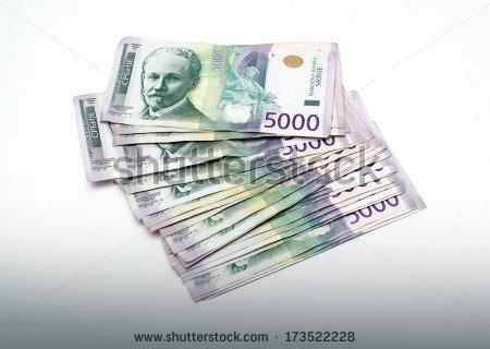 Prosečna plata: 46.990 dinara