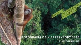 Bielsko-Biała: Wystawa zdjęć dzikiej przyrody