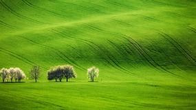 10 powodów, dla których warto odwiedzić Morawy