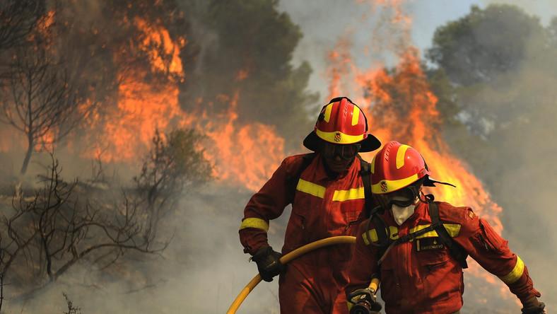 W Hiszpanii wybuchł pierwszy tego lata wielki pożar lasów