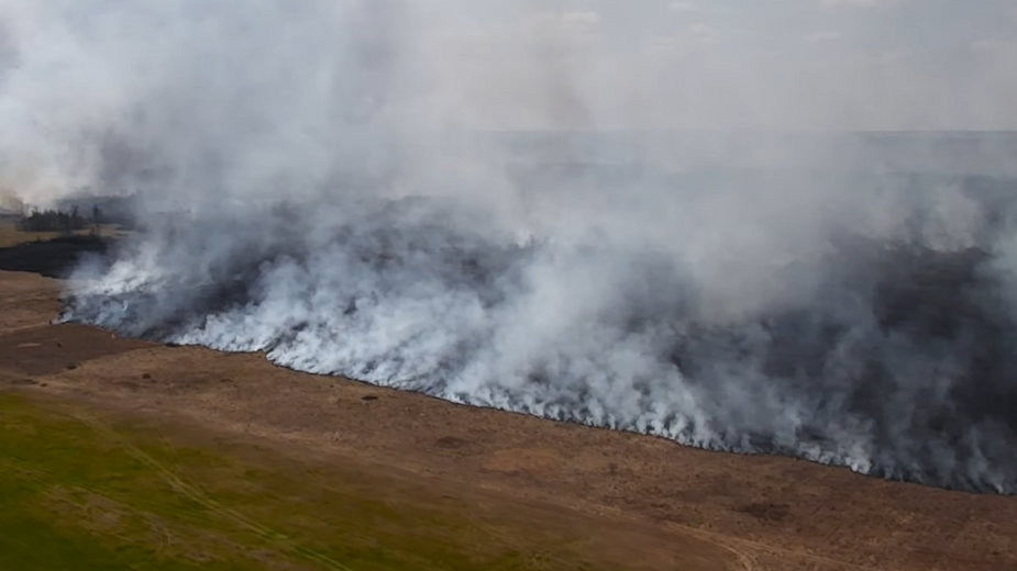 W 2020 r. pożar Biebrzy pochłonął ponad 5 tysięcy hektarów terenu