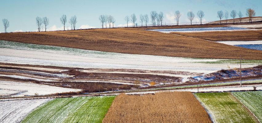 Inwestowanie w grunty, zakup ziemi - czy jest to nadal opłacalne?