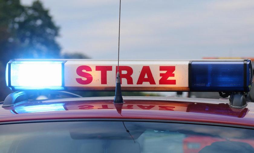 Do dramatycznych wydarzeń doszło przy ul. Kościuszki w Zgorzelcu
