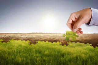 Wyścig do neutralności klimatycznej