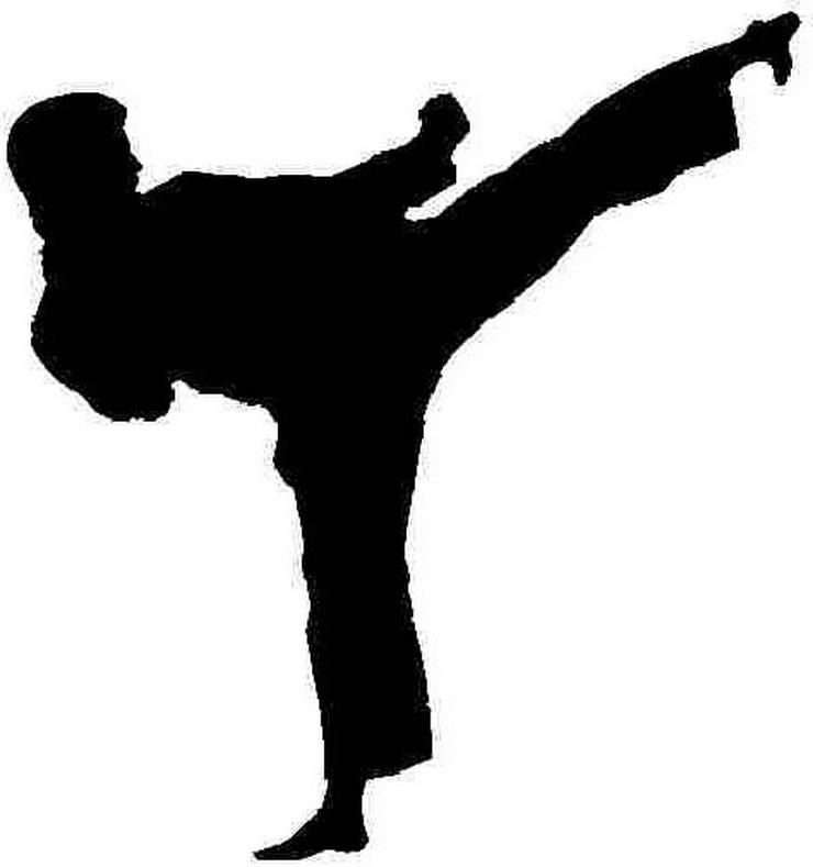 299007_karatelogo1