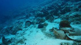 Archipelag Furni - największe na świecie starożytne cmentarzysko wraków