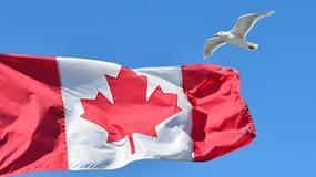 Kanadyjskie stereotypy i ich naukowe potwierdzenia