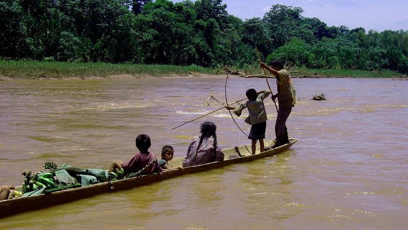 Plemię Tsimané