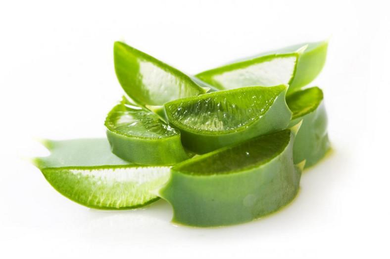 Aloe vera gel possesses natural anti-inflammatory properties [ece-auto-gen]